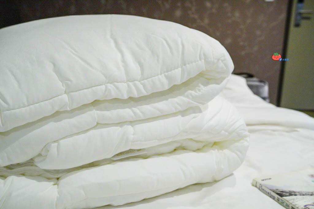 【羽絨被推薦】可水洗Dacron洗輕柔纖維被 Homeget家適得 雙人價格