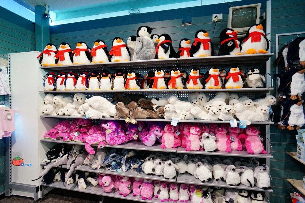 墨爾本企鵝島一日遊 長城旅行社