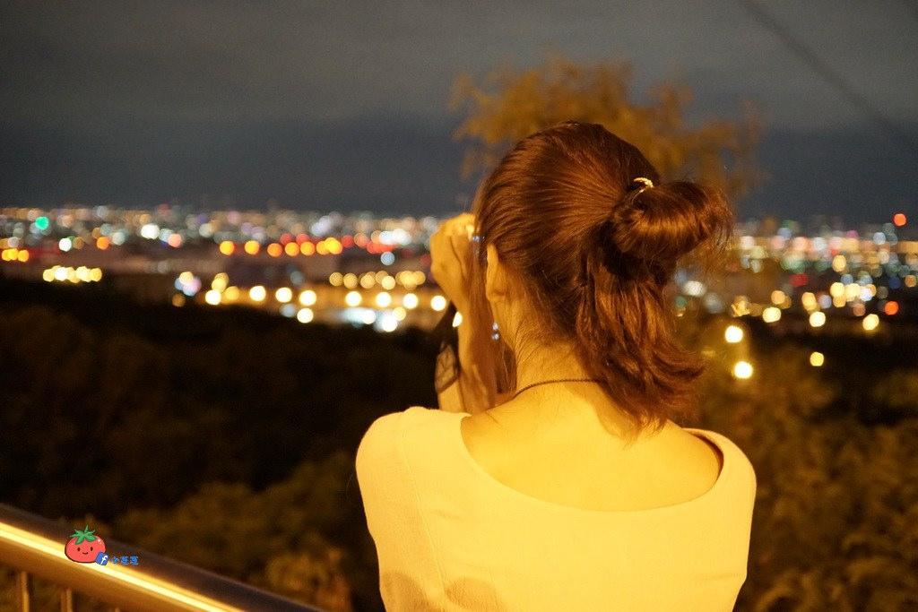 台灣觀巴台中一日遊 高美溼地路線