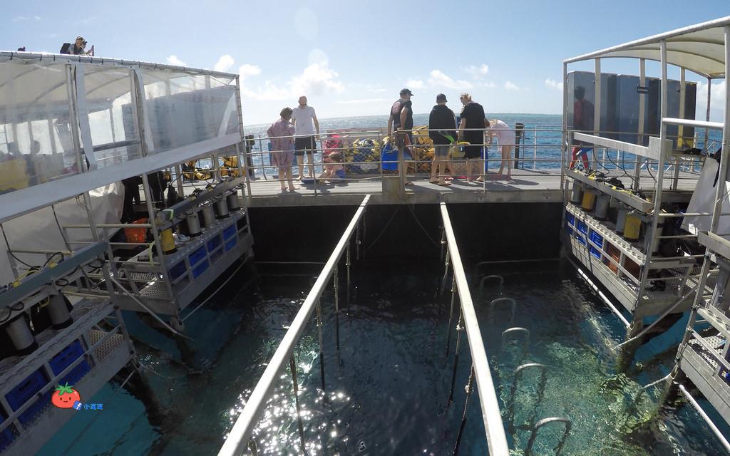 凱恩斯大堡礁 銀梭號Quicksilver Cruises
