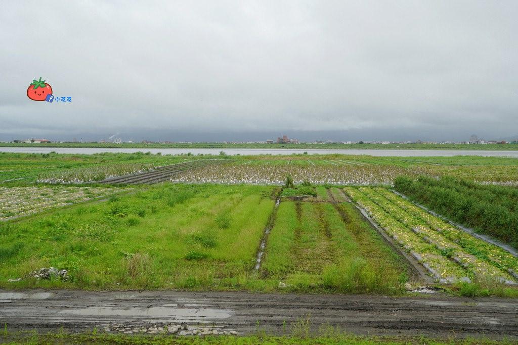 宜蘭行程-新南農園