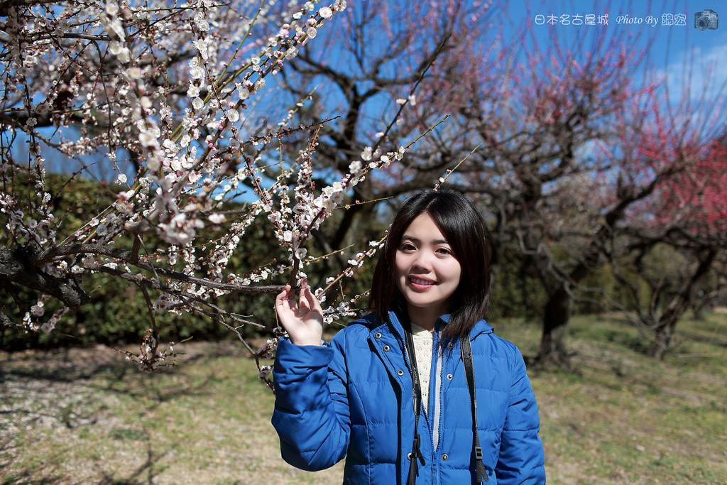 2016.03.11~日本名古屋城 梅花