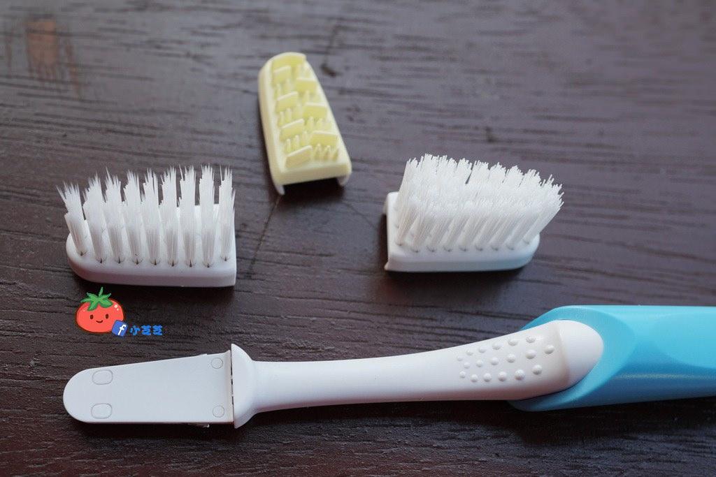 牙刷推薦 周拋 薩寶悠